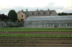 Wilson Farms, Lexington, Massachusetts, USA
